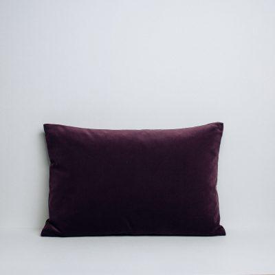 1110014-aubergine_result_