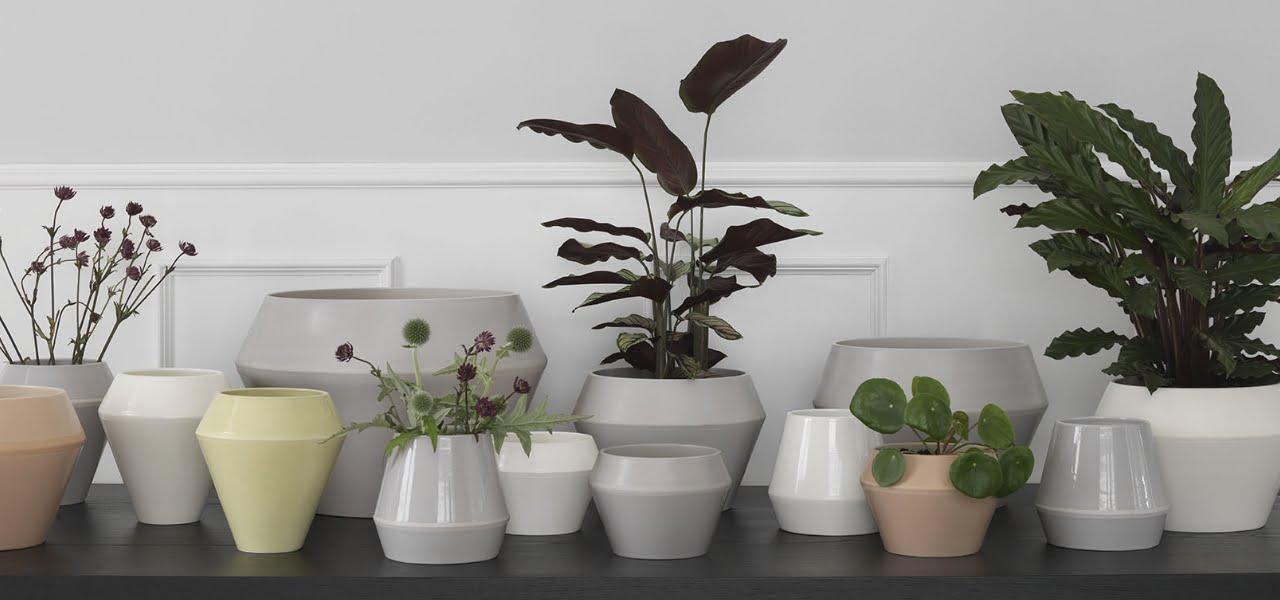 bo-med-planter