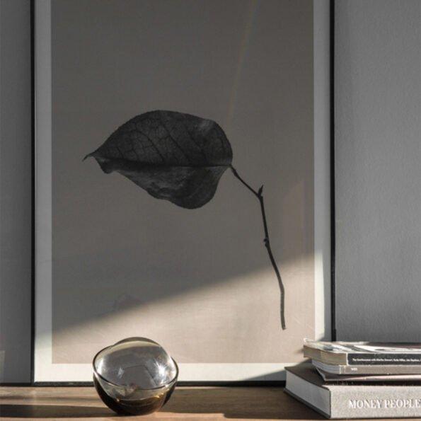 Sabi Leaf 03 – 50×70