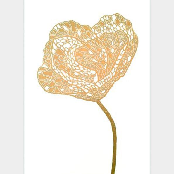 Gold poppy 2 on white